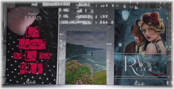 http://tsuki-books.cowblog.fr/images/Divers/Livres/Autourdeslivres/1000586.jpg