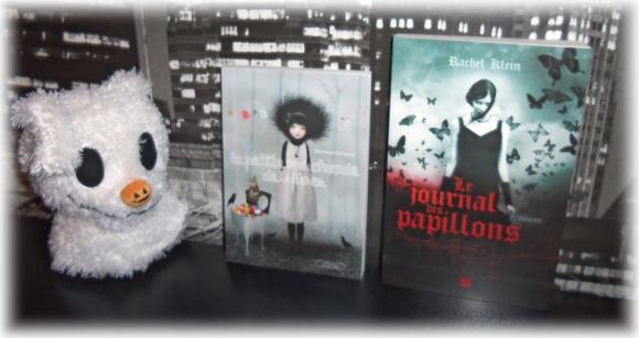 http://tsuki-books.cowblog.fr/images/Divers/Livres/Autourdeslivres/1001022.jpg