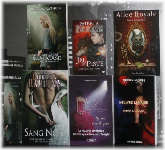 http://tsuki-books.cowblog.fr/images/Divers/Livres/Autourdeslivres/IMG0342-copie-1.jpg