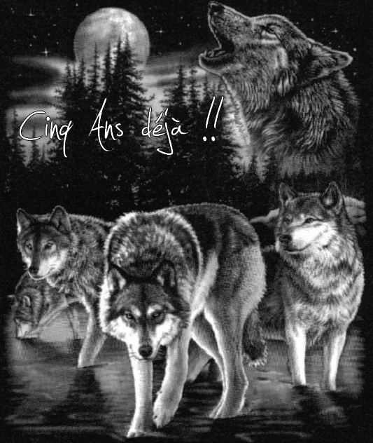 http://tsuki-books.cowblog.fr/images/bwwolveshowlingwolfpack.jpg